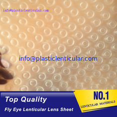 China PLASTIC LENTICULAR double sided dots 360 3d effect fly eye lenticular film plastic sheets supplier
