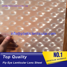 China PLASTIC LENTICULAR clear fly-eye plastic sheet fly eye lens film material with 360 3d effect supplier