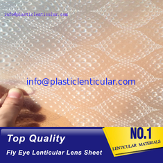 China PLASTIC LENTICULAR wholesale plastic 3d fly eye lenticular sheet micro lens film material supplier