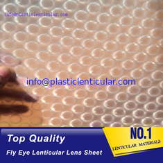 China PLASTICLENTICULAR latest flying 3d lenses fly-eye plastic sheet film with 3d 360 degree supplier