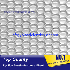China PLASTIC LENTICULAR 80lpi 0.45mm dot lens sheet fly eye lenticular sheet 360 3d dot lens lenticular material supplier