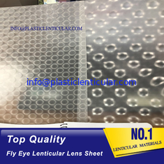 China PLASTIC LENTICULAR Super transparent fly eye lenticular lens sheet 360 3d microlens film arrays supplier