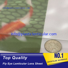 China PLASTIC LENTICULAR 17 lpi lenticular fly eye lenslet sheets-360 3d microscopes and magnifying glasses supplier