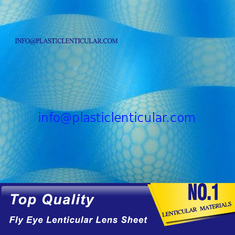 China PLASTICLENTICULAR 360 3d Lenticular sheet fly eye lens buy online-80 lpi Lenticular sheet fly eye manufacturer india supplier