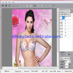 China PLASTICLENTICULAR lenticular image creator software best lenticular software for 3d lenticular supplier