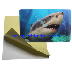 China PLASTICLENTICULAR Wholesales Halloween OEM Competitive Price 3d flip card stickers supplier