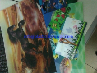 China Good price 3D animal picture animation 3D lenticular animal photo promotional gift PET lenticular cards flip 3D picture supplier
