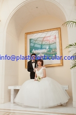China PLASTIC LENTICULAR customized plastic material 3d lenticular wedding photo with depth 3d moving effects supplier