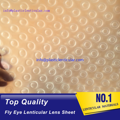 PLASTICLENTICULAR 3d 360 fly eye lens sheet fly eye lenticular sheet arrays with small dots