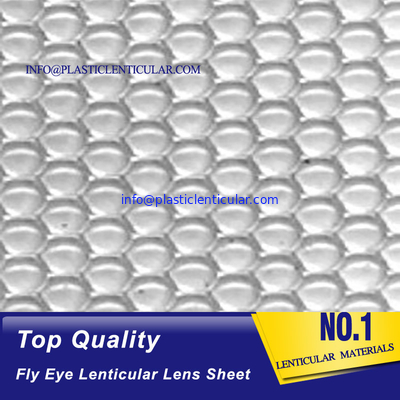 PLASTICLENTICULAR high quality one sided dots 360 3d fly eye lens sheet dot lenticular sheet