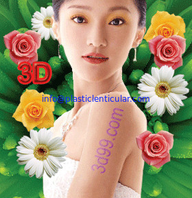 PLASTICLENTICULAR fly eye lenticular sheet printing design software with 3d effect 360 degrees